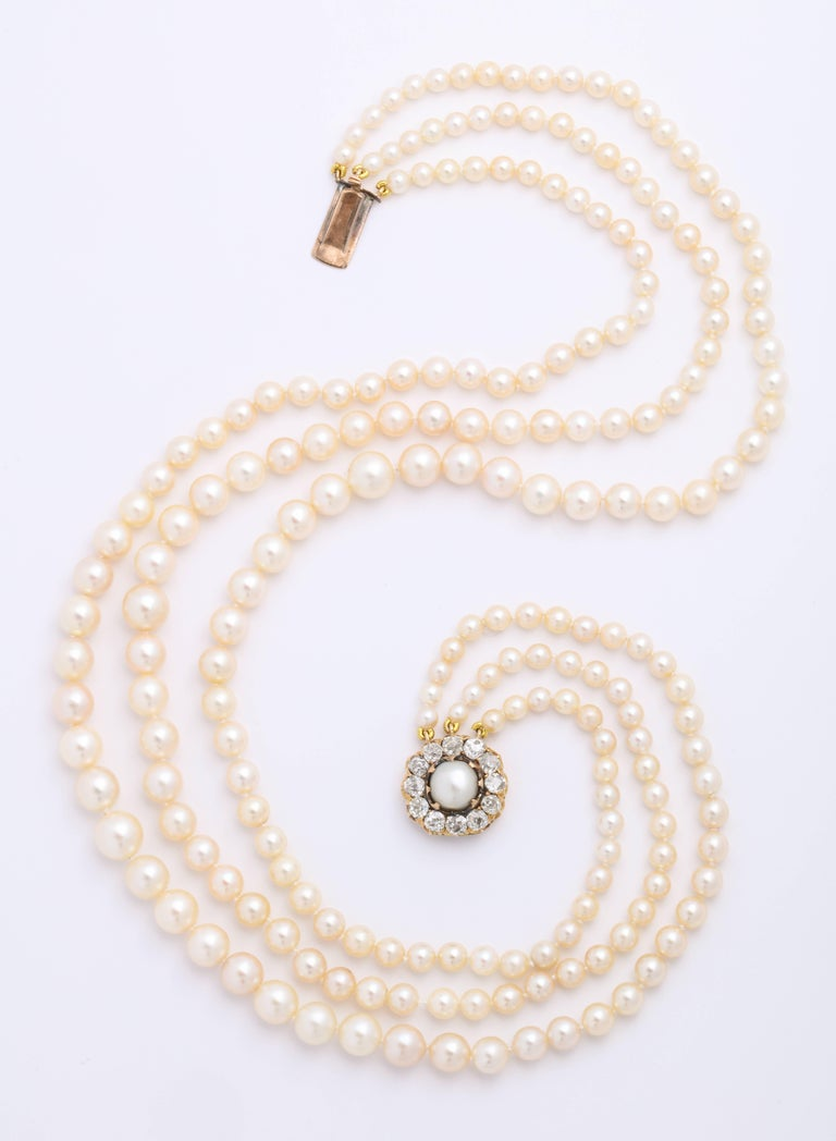 Old Mine Cut Cultured Pearl Necklace with Antique Diamond Clasp For Sale