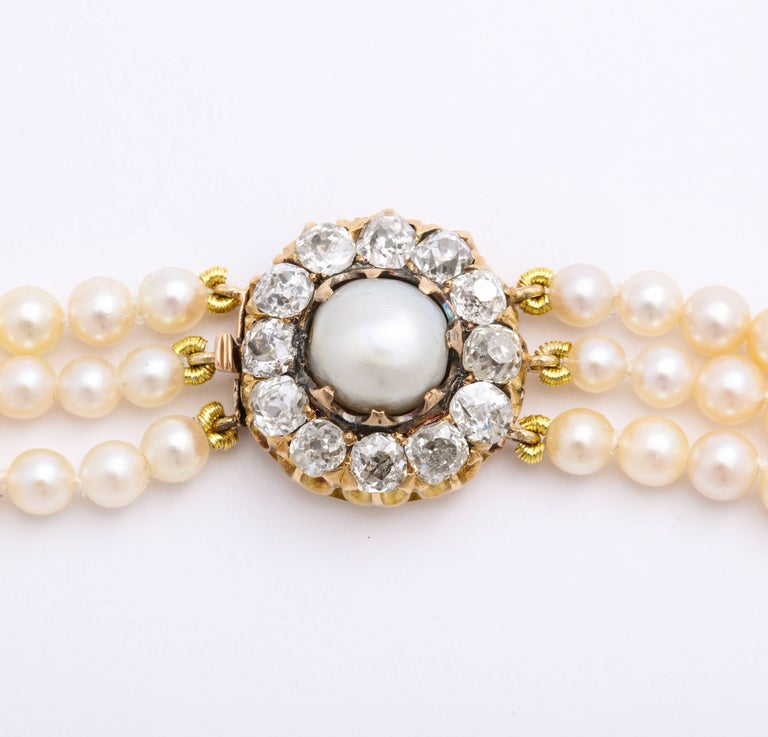 Cultured Pearl Necklace with Antique Diamond Clasp For Sale 2