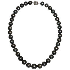 Cultured South Sea Pearl Necklace