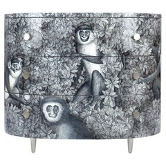 Curved Chest of Drawers Scimmie Grey Shades, Chromed Details