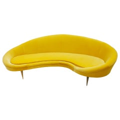 Curved Yellow Cotton Velvet and Brass Italian Sofa