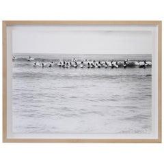 Custom Framed White Oak 1950s Black and White Surfer Photo