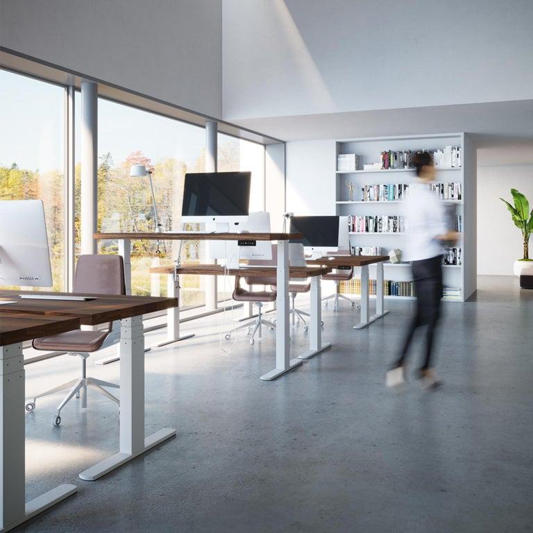 Modern Custom Sit/Stand