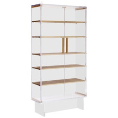 Custom Tall Lucite Cabinet with Brass Shelves