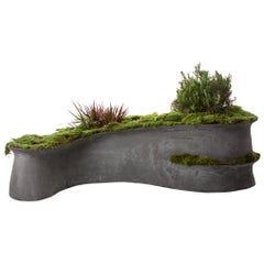 "Concrete Barchan Planter by OPIARY (L42"", W28"", H10"")"