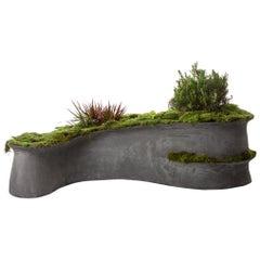 """Modern Concrete Barchan Planter by OPIARY (L 42"""", W 28"""", H 10"""")"""