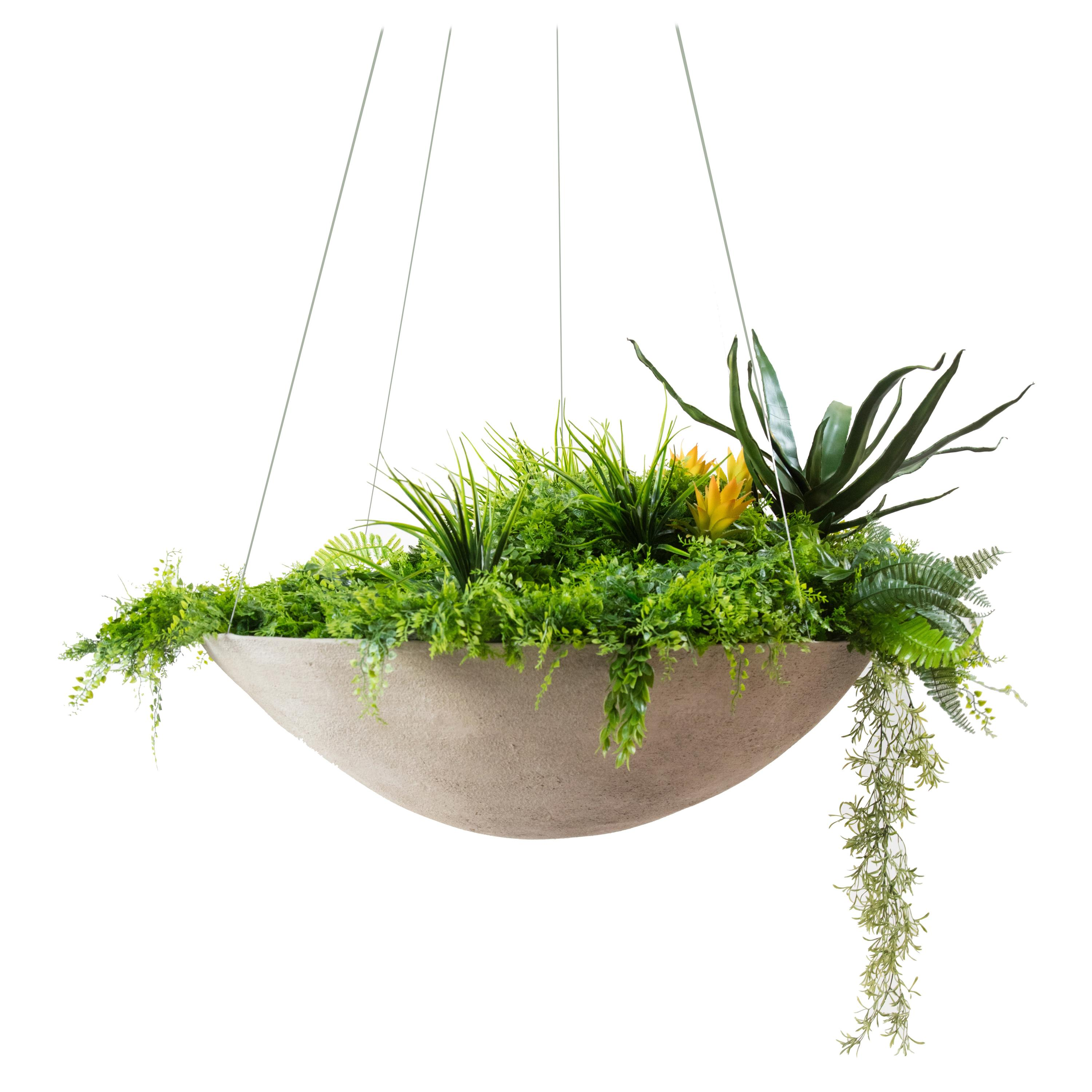 """Ukiyo Saucer, Concrete Hanging Planter by OPIARY (D11.5"""", H5.5"""")"""