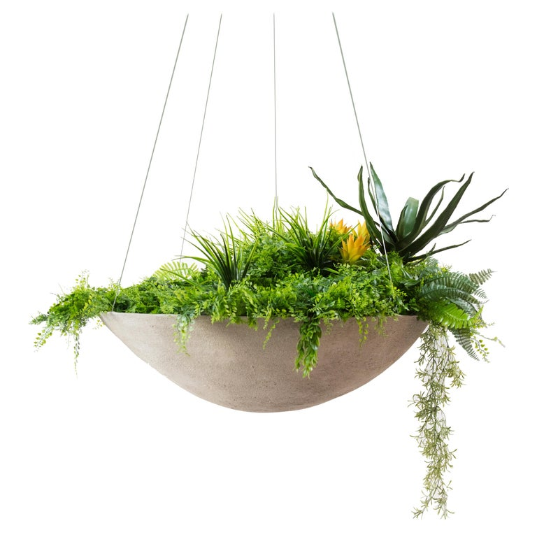 """Ukiyo Saucer, Concrete Hanging Planter by OPIARY (D11.5"""", H5.5"""") For Sale"""