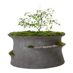 "OPIARY Concrete ""Jabbah"" Planter (Small : DIA 24"", H 10"")"