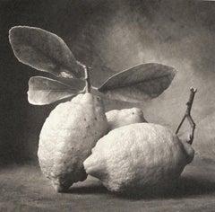 Cy DeCosse, Tuscan Lemons,  1995, still life, platinum print
