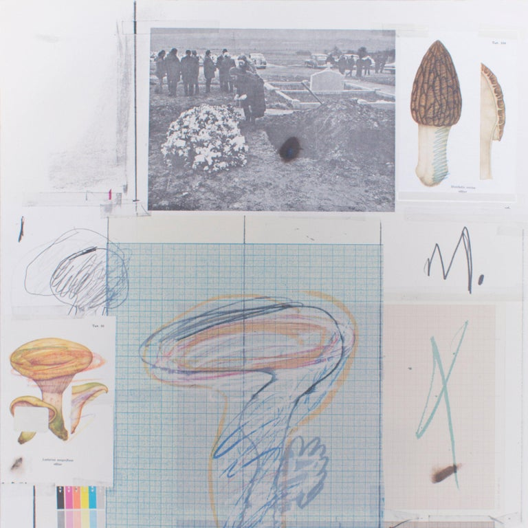 Natural History, Part 1, Mushrooms N. VII - Original Mixed Media by Cy Twombly For Sale 1