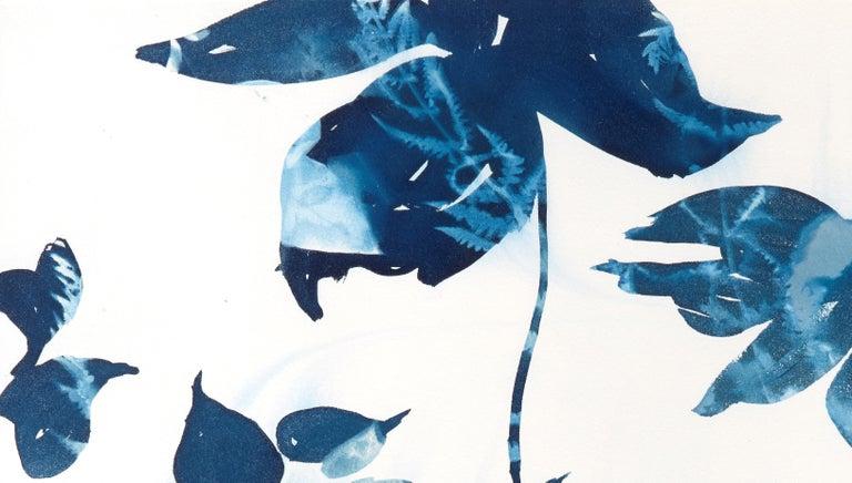 Ephemeral 1, Botanical,  Floral, Cyanotype, Blue, Work on Paper, Flowers - Print by Cynthia MacCollum