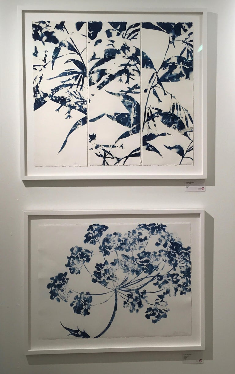 Ephemeral 1, Botanical,  Floral, Cyanotype, Blue, Work on Paper, Flowers For Sale 1
