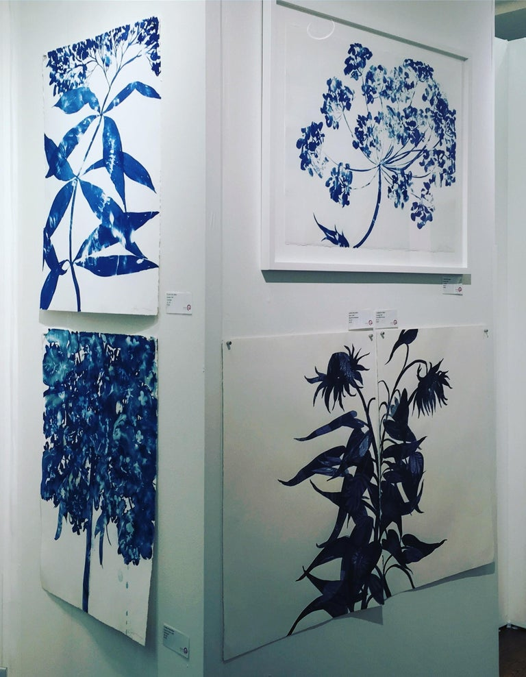 Waltz, Botanical, work on paper, Cyanotype, Blue, Nature, monoprint, Original 1