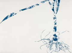 Waltz, Botanical work on paper, Cyanotype, Blue, One of a kind, monoprint