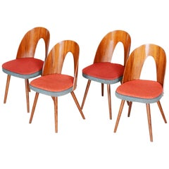 Czech Brown and Red Walnut Chairs, 4 Pieces, Architect Antonín Šuman, 1950s