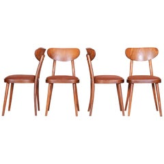 Czech Brown Beech Midcentury Chairs, 4 Pieces, 1940s, Well Preserved Condition