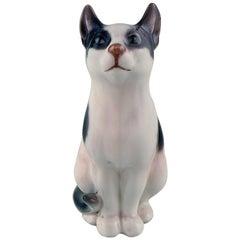 Dahl Jensen, Cat, Model Number 1013