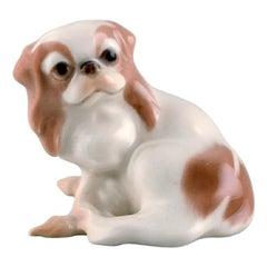 Dahl Jensen for Bing & Grondahl, Pekingese Porcelain Figurine
