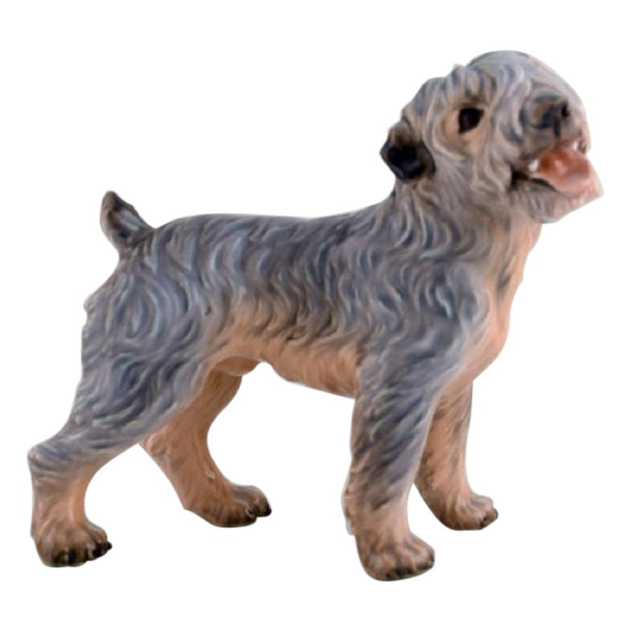 Dahl Jensen Porcelain Figure, Terrier, 1930s-1940s