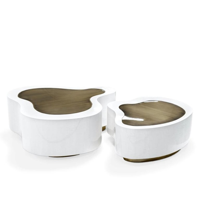 Dalia White Brass Set of 2 Coffee Table For Sale 2