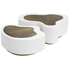Dalia White Brass Set of 2 Coffee Table