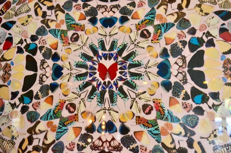 British Damien Hirst Butterfly Kaleidoscope Wallpaper For Sale