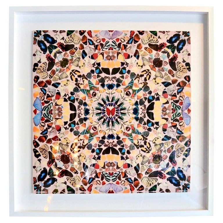 Damien Hirst Butterfly Kaleidoscope Wallpaper For Sale