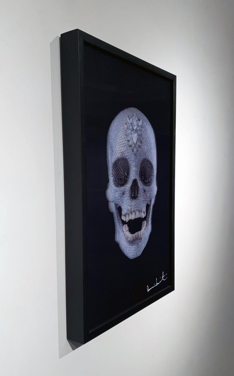 3D Skull (Small) For Sale 1