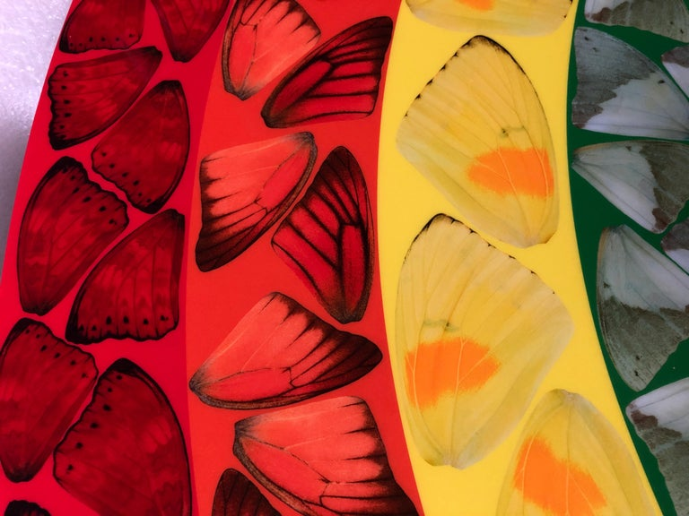 Butterfly Rainbow (Large) -- Giclée Print, Colourful, Rainbow by Damien Hirst For Sale 1