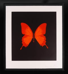 Damien Hirst, Butterfly Soul Etching, Red, 2007