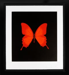 Damien Hirst, 'Butterfly Soul' Etching, Red, 2007