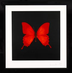 Damien Hirst, Red Butterfly Soul Etching, 2007