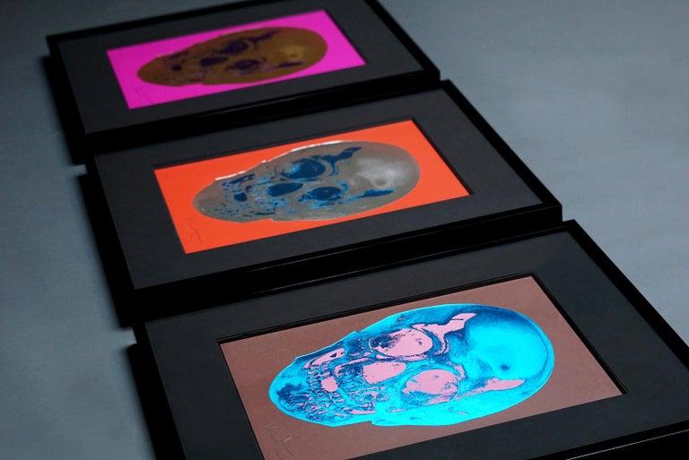 Damien Hirst, Skull, Brown/Blue, (2012)  For Sale 5
