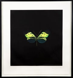 Damien Hirst The Souls on Jacobs Ladder Take Their Flight Green Butterfly 07