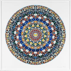 'Mantra' Butterfly Kaleidoscope with Diamond Dust, 2011