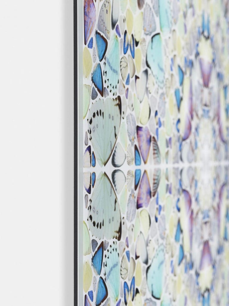 The Elements: Air - Gray Abstract Print by Damien Hirst