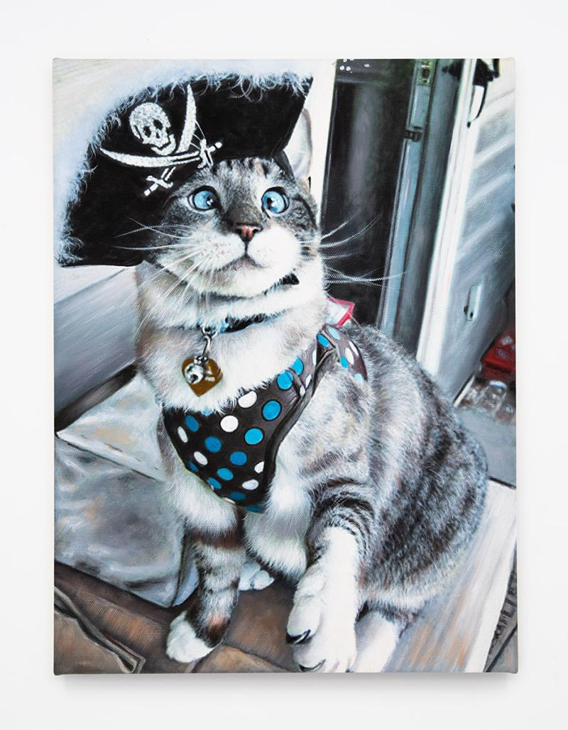 Pirate Kitty (Silver Tabby)
