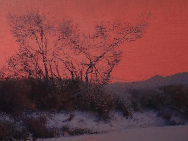 CHATFIELD, Colorado landscape, dusk, red sky, realism, snow scene 2