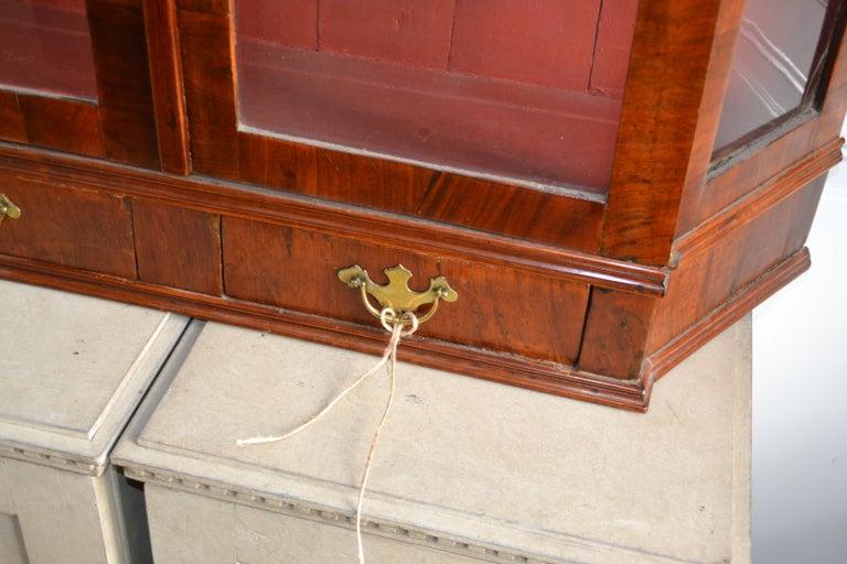 Danish 18th Century Walnut Veneer Wall Vitrine Display Case For Sale 3
