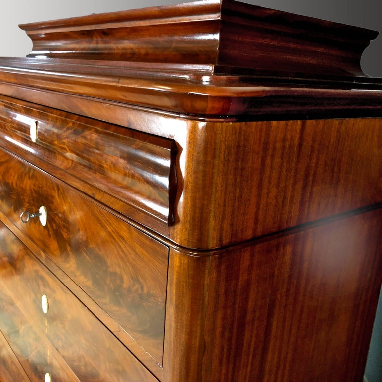 Danish Mid 19th Century Biedermeier Commode Tall Chest of drawers For Sale 2