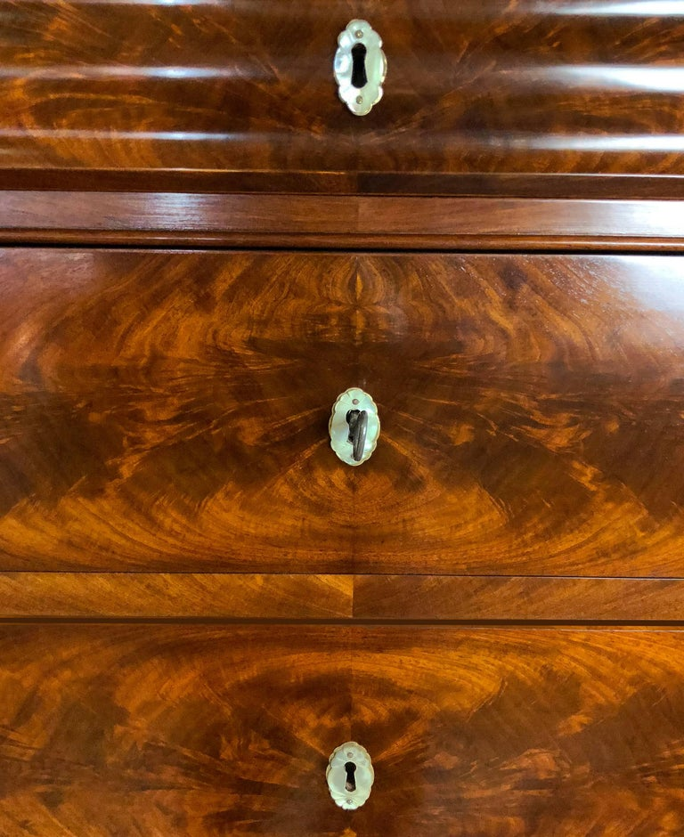 Danish Mid 19th Century Biedermeier Commode Tall Chest of drawers For Sale 3