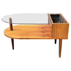 Danish Coffee Table and Planter