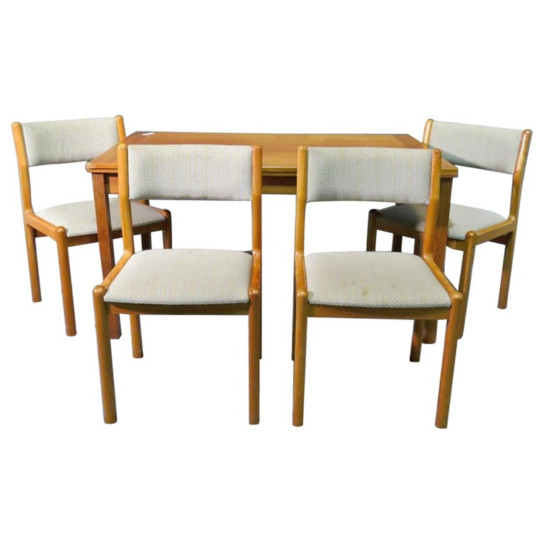 Danish Mid-Century Modern Dining Set For Sale
