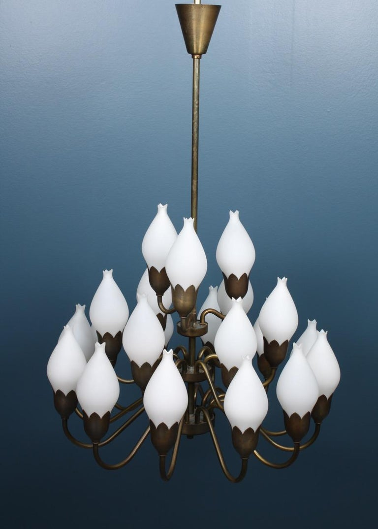 Danish Midcentury Tulip Chandelier in Brass and Glass by Fog & Mørup, 1950s In Excellent Condition For Sale In Lejre, DK