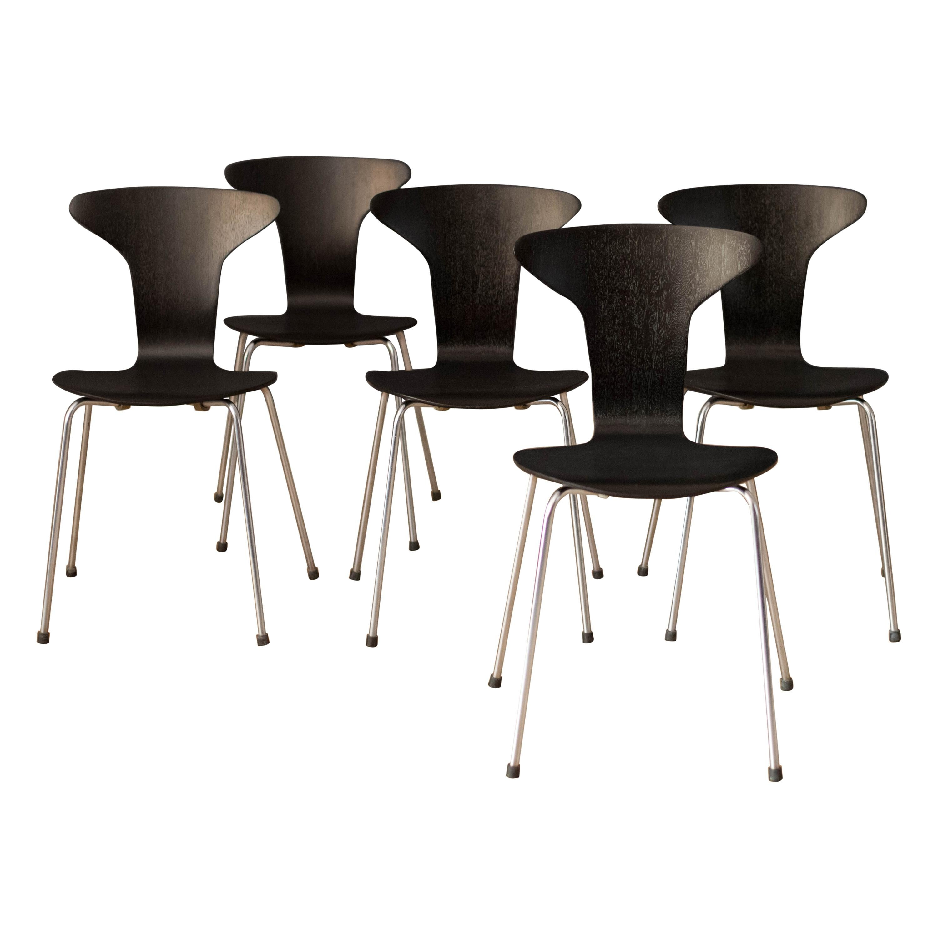 Danish Mosquito Munkegård Dining Chairs by Arne Jacobsen