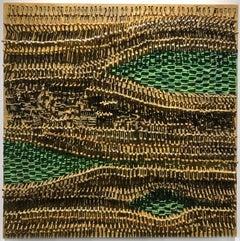 Symbiosome Weave