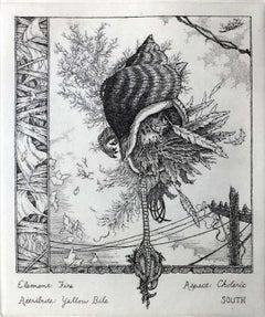 The Coming of the Cocklicranes, No. 2 (Summer)