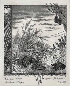 The Coming of the Cocklicranes, No. 4 (Winter)