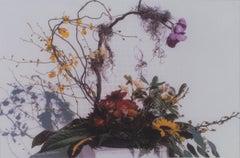 """""""Feng Shui Floral,"""" original fine art photograph by David Barnett"""